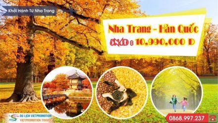 NT.HQ_-440x248 Trang Chủ