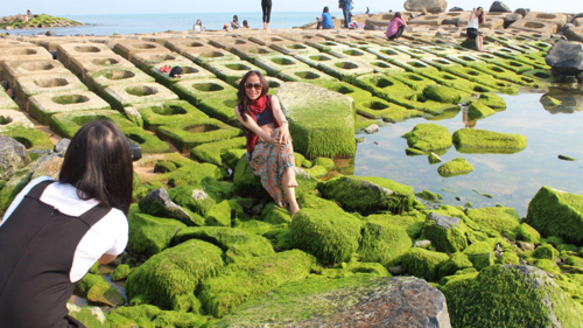 rêu xanh phú yên